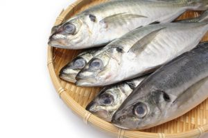 動脈硬化を防ぐ食材は豆腐と青魚、血管老化を防止する栄養素