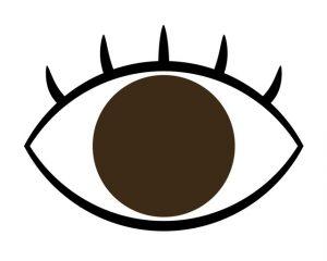 アイドッグで緑内障や加齢黄斑変性。老眼・ドライアイ自宅予防