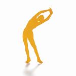 体脂肪が増える仕組みと筋肉量が増える仕組み知ってから筋トレをする